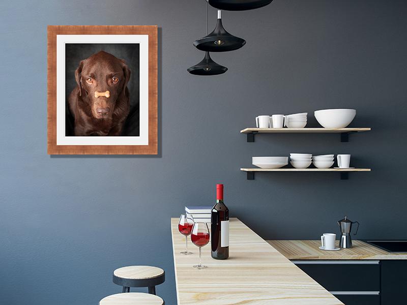 Seven Springs Studios Pet Portrait Room Example